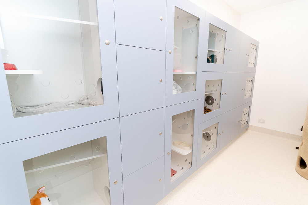 Crows Nest Animal Hospital